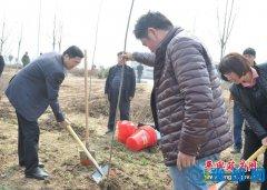 县四个班子领导带头参加义务植树活动