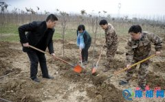 县领导申保卫、陈黎等参加植树节义务植树活动