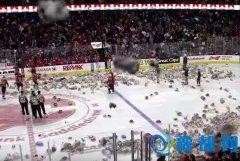 冰球场观众疯狂空投数万泰迪熊 致比赛中断(图)