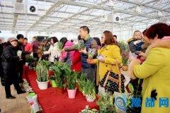 三门峡首家花卉市场在湖滨区农业示范园试营业