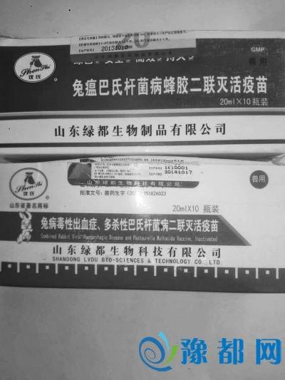 洛阳养殖户买到假疫苗 800只獭兔打疫苗后死亡