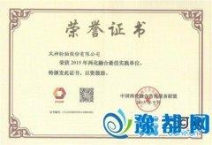 风神轮胎荣获2015年中国两化融合最佳实践单位