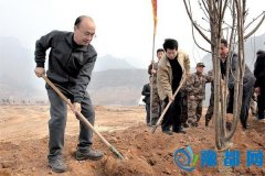宗长青张宇松等市领导参加义务植树活动