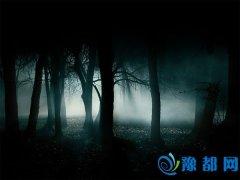 十六条创业黑暗森林法则
