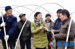 正阳县政协委员深入农村一线传授农业科技知识