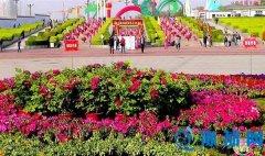 孟津县送庄镇做好五项工作迎接牡丹文化节