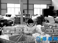 陕州区:苹果销售火爆 带领农民致富