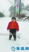 鲁山迎来新年第一场雪