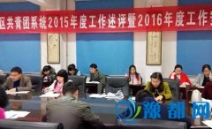 团区委组织全区团干召开工作述评会