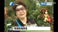 郑州市第二十二届月季花展开幕 将持续至5月9日