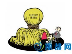 2015省级政府透明度排名前十位出炉 河南第三