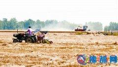 确山、泌阳部分小麦开始收割 我市小麦丰收在望