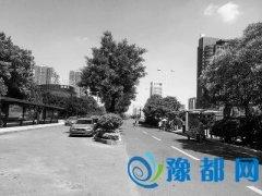 """郑东新区16座公交港湾出生就成""""备胎"""" 3年未整改"""