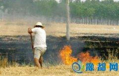 郑州市政府办公厅下发通知 严防焚烧秸秆行为