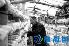 河南省卢氏县:打工村走上脱贫致富路(组图)