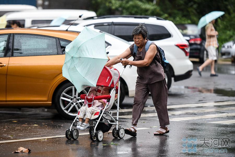奶奶的伞为小孙女遮风避雨。