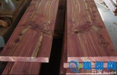 [进口木材知识]进口木材树种申报亟待规范