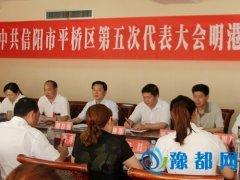 柳自强参加平桥区第五次党代会明港镇代表团讨论