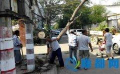 区住建局积极应对暴雨,迅速清理大风刮倒树木