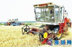 全市麦收工作进展顺利