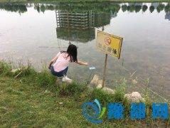 河南农业大学农学院赴郑州龙子湖进行水污染调查