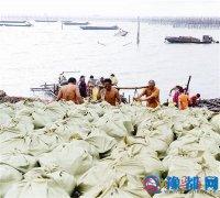 宿鸭湖河蚌远销东南亚