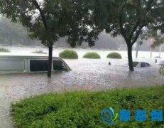 暴风雨中的担当――农行新乡分行抗洪救灾纪实