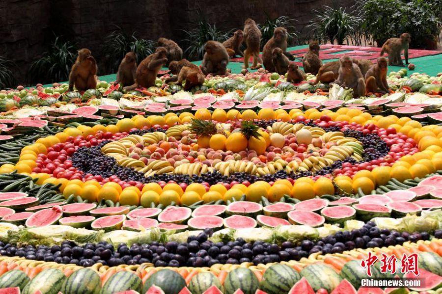 """河南:8000余斤超级水果拼盘宴请""""美猴王"""""""