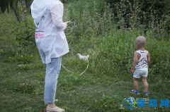 实拍:长春女子拴绳遛鸡 市民吐槽质疑声不断