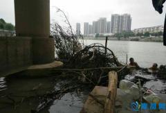 潢川党员志愿者下河排阻护大桥