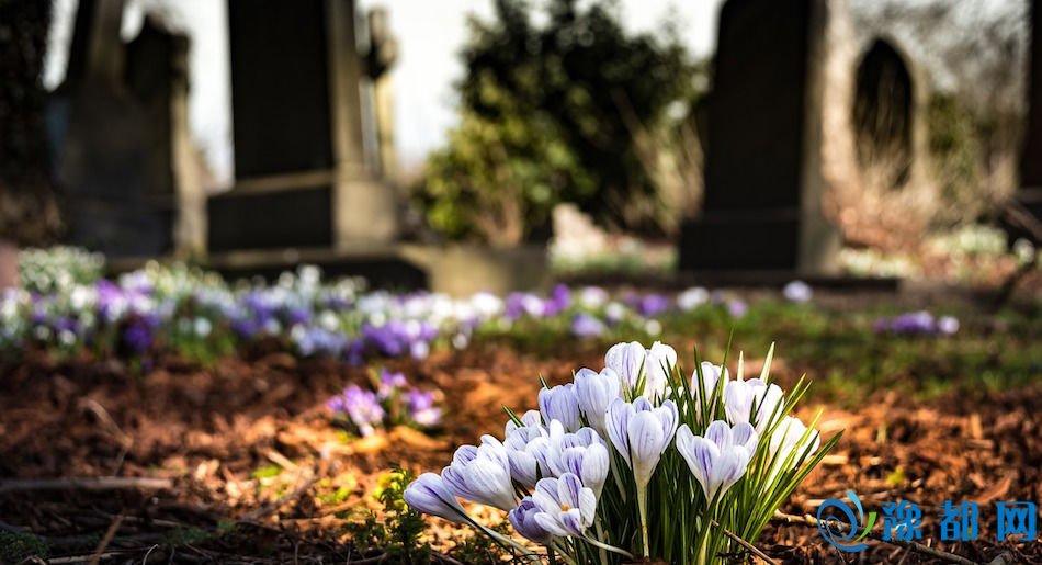 graveyard-death