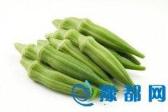 黄秋葵的功效与作用以及食用用方法
