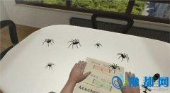 实用VR应用《Arachnophobia》 帮助你克服蜘蛛恐惧症