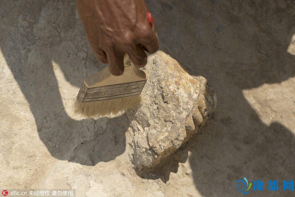 """科学家发现古人类化石 比""""霍比特人""""更矮小"""