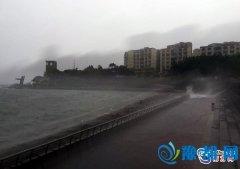 """""""妮妲""""2日03时35分在深圳市大鹏半岛登陆"""