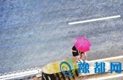 洛阳昨日突降大雨 网友称被淋傻