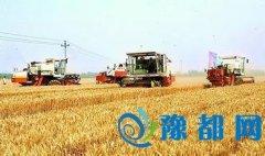 河南已收获小麦面积6013万亩