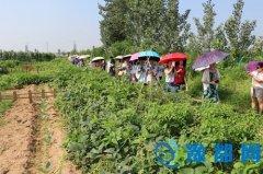 河南省省级示范幼儿园园长研修班开班