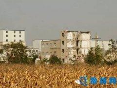 郑州一城中村拆迁分房 双男户比双女多250平