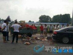 郏县安良镇运河桥南路段发生一起交通事故(图)