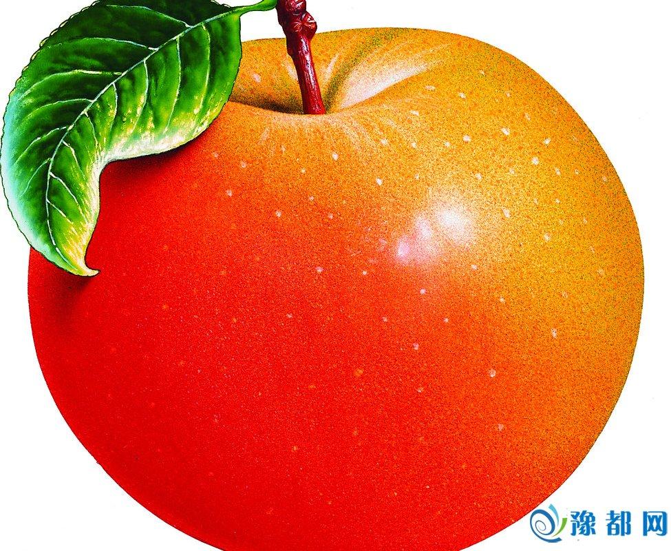 有的水果秋天常见 是什么水果呢