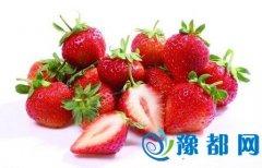 野生的草莓有营养吗 到底能不能食用