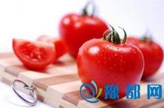 一天一个西红柿 远离抑郁症危害