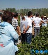 大郭镇组织贫困户代表到外地参观学习脱贫技术(图)