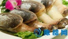 象拔蚌是什么 象拔蚌能吃吗