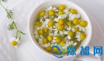 喝菊花茶有什么好处 哪些人不适合喝菊花茶