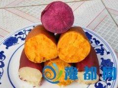 吃红薯的好处 谈红薯的几大养生保健