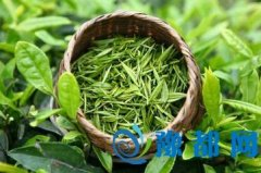 秋天喝什么茶好 绿茶可缓解心火肝火
