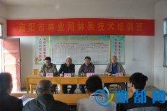南阳市林业局科技人员深入桐柏县举办扶贫技术培训班