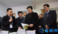 副省长王艳玲莅临平舆县调研农民工返乡创业工作